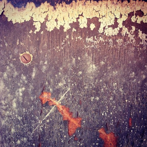#texture #decay #paint #wood #organic (Taken with instagram)
