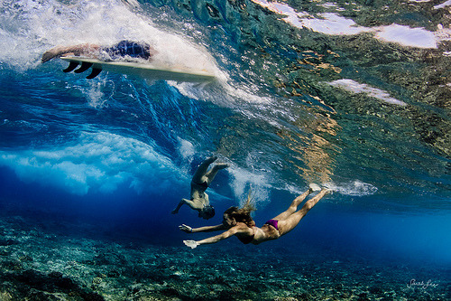 surferdude182:  (by SARAΗ LEE)