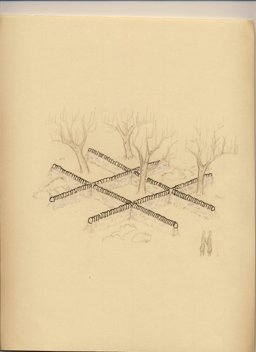 Successional Tic Tack ToeInk, graphite, and white colored pencilProposal for successional Tic Tac Toe board installation in Harmony, Maine Left to their own successional devices, which species would win a game of successional tick tack toe in an abandoned agricultural field over the course of twenty years? Juniper virginiana, Rosa multiflora , Pinus strobus, Betula  lenta, etc.  Place your bets.