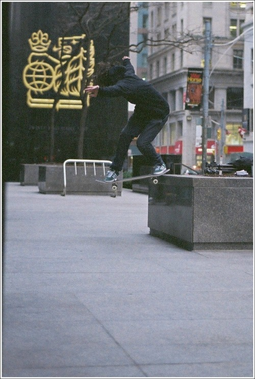 mind-attic:  Jay Brown-back tail