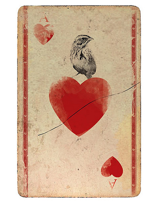 delisandwich:  Ace Of Hearts • Nuno