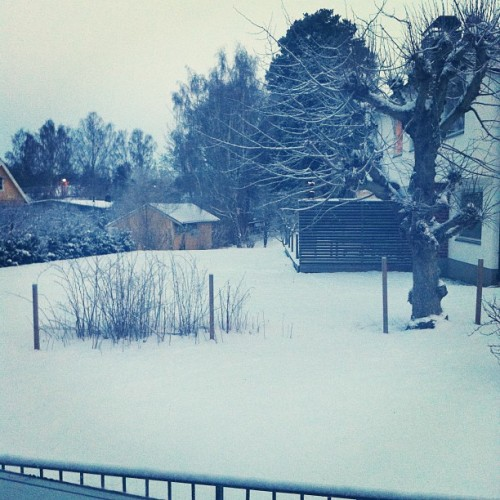 #morning #february #FRIDAY #sweden #snow #winter #cold #morning  (Taken with instagram)