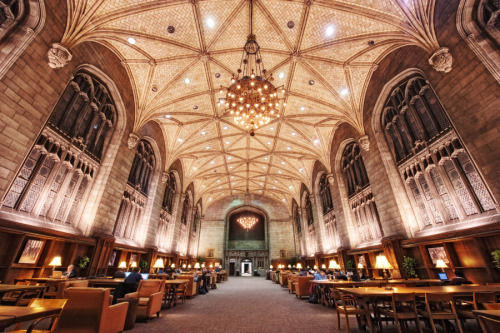 bibliothecarum:  Harper Memorial Library, University of Chicago, Chicago, Illinois, USA.
