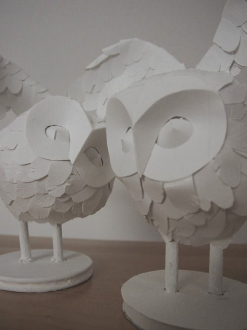 two mini paperdermy owls! One is going to my best friend! :) The other is on my etsy store! http://www.etsy.com/shop/ellaclawley