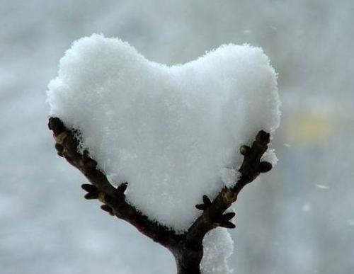 lechoixtrois:   HEART OF SNOW One more time- it's cold outside! source: valentineblog