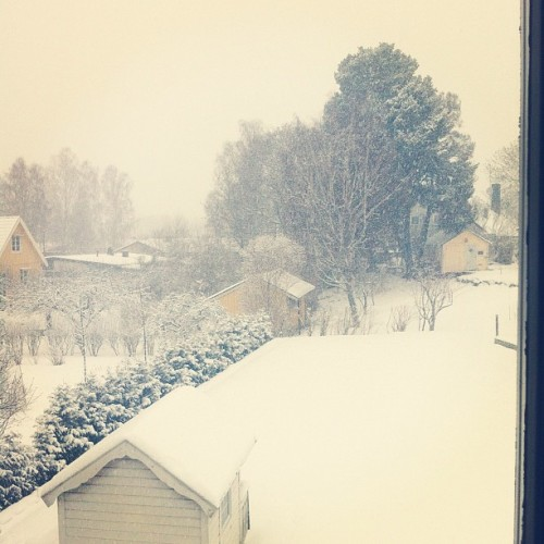 #winter#wonderland#paradise#snowing#alot#snow#sweden  (Taken with instagram)