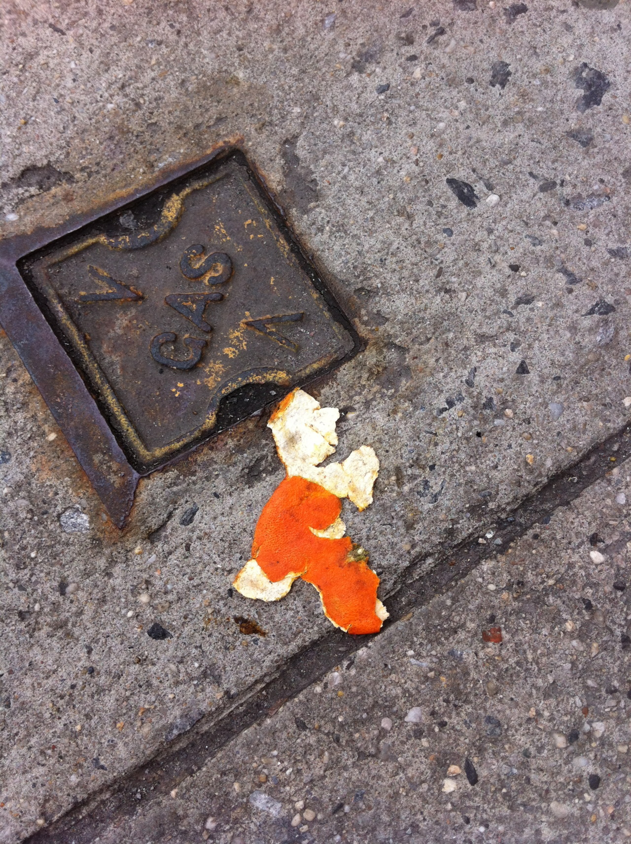 TANGERINE PEEL/ WALKING MAN (or Berlin's Ampelmann? Or Yoshi from Mario? Or Fighting Irish?) Things that are insane about this find: he has a distinct eye and mouth, a perfect nose and hair (or hat!), two complete legs and an arm; and if you look closely, a tiny tiny tiny tiny little wee-wee and one tiny ball.  Ok! I think that about does it.