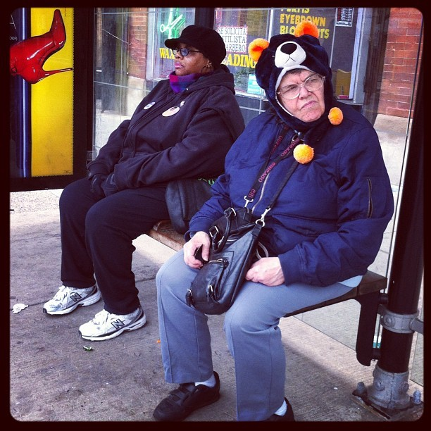 Public Trans Bear Fan (Taken with instagram)