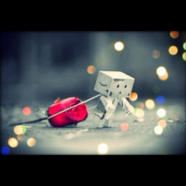 Love will find you if you try #danbo #pictureoftheday (Taken with instagram)