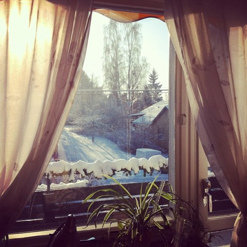 Paradise outside #window #my#room#outside#sweden#snow#pretty#nature #paradise #snow#alot #white #trees #sunshine #beautiful #february  (Taken with instagram)