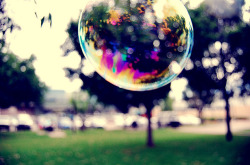 Bokeh & Bubble on Flickr.