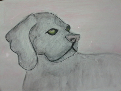 5 mins water color, the dog :))