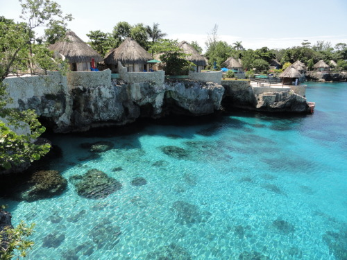 thesummernights:  summer-avenue:  endless—0cean:  Negril, Jamaica holy moly   HOLY COW