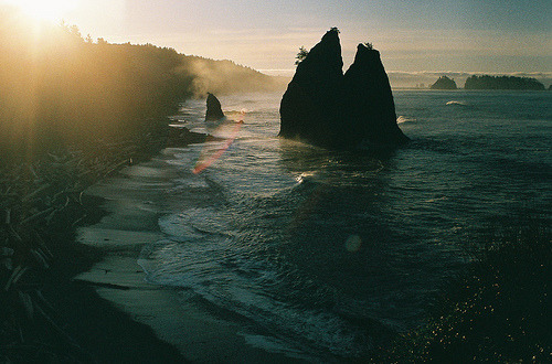 thecelution:  (by christopher raymond)