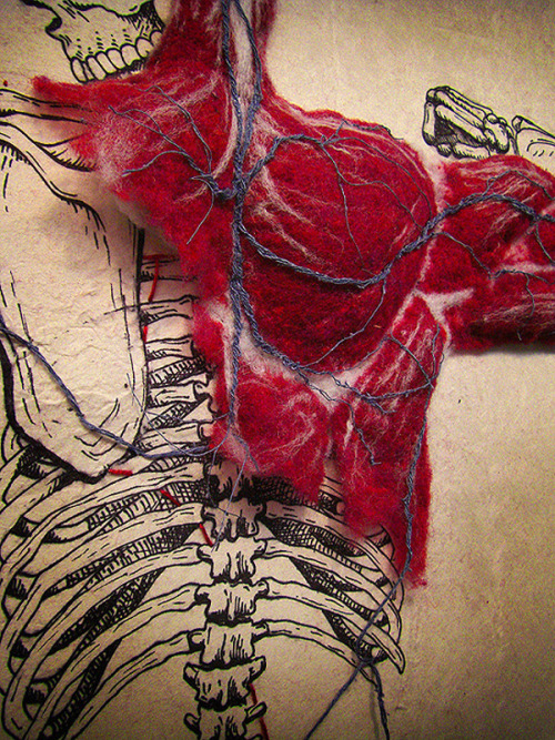 youngeverest:  Felted Anatomy, Dan Beckemeyer