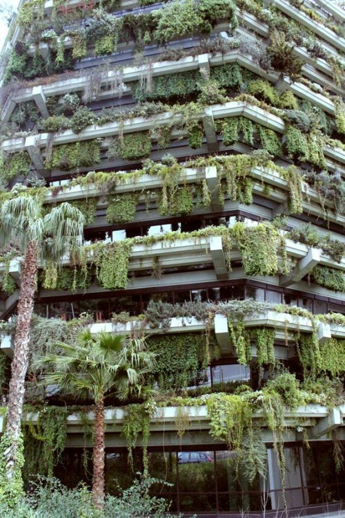 88karats:  Hanging Gardens of Babylon…