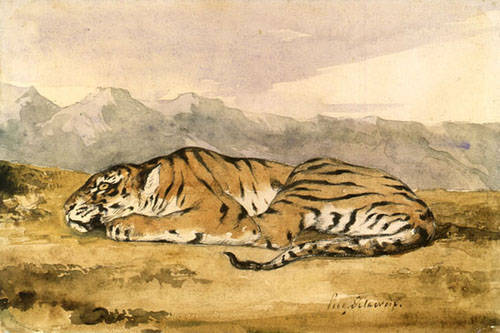 Eugène Delacroix (French, 1798-1863). Royal Tiger. Pen and brown ink and watercolor, over graphite. 7 x 10 9/16 in. (178 x 268 cm). Thaw Collection. © The Pierpont Morgan Library