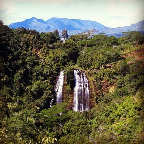 'Opaeka'a Falls! #kauai #hawaii (Taken with Instagram at Opaekaa Falls)