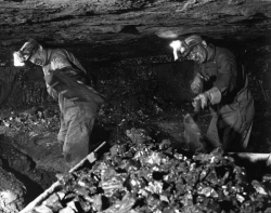 Struggle to survive in coal mines.