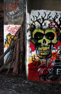 "Title: Faggots and Skulls - Photography by eCAB.  Living in New Jersey requires you to visit some pretty ""Weird"" places. The Paulinskill Viaduct is one such place. It is hard to capture this immense structure, let alone all the amazing graffiti that is scattered all over this abandoned bridge. There was something that stood out at me about this random pile of sticks and a very ominous surrealistic skull. Oh and if the title offends you… pick up a dictionary. Copyright 2012"