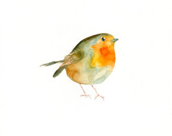 In the snowy garden I launched crumbs of bread: robins, wrens and sparrows make a banquet…