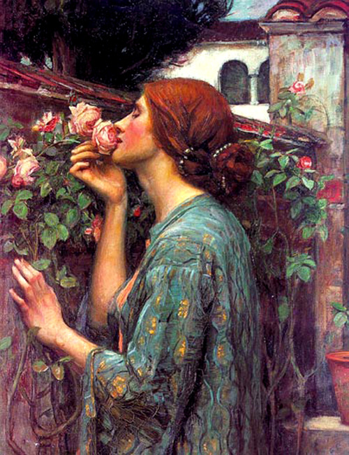 MY SWEET ROSE, 1903 - John William Waterhouse (1849 - 1917)