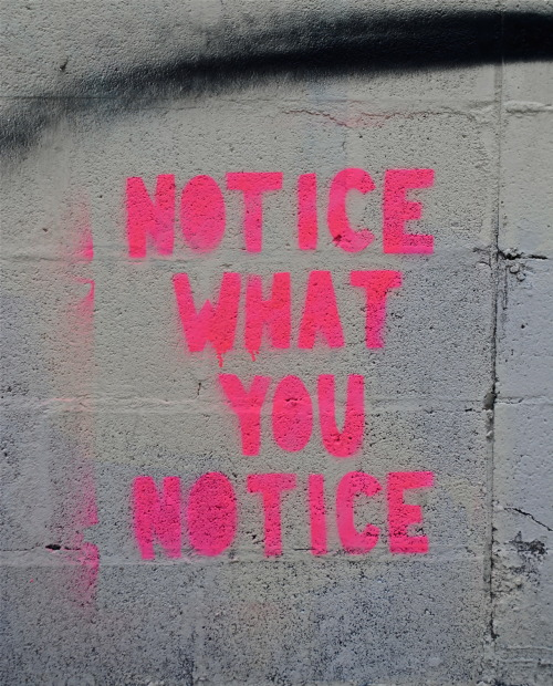 notice what you notice