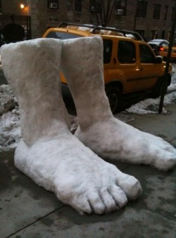 new-yorkcity:  Blimey, 2 feet of snow in New York City!