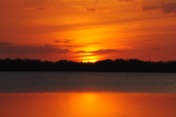 cbirdfly:  Sunset. Lake Lochloosa, Micanopy, Fla., February, 4, 2012.