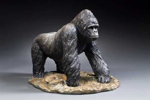 "Cindy Billingsley: Gorilla, 2008, 22"" x 20"" 21"", raku clay, hand built solid, hollowed for firing, low fired, cold finish acrylic and wax"
