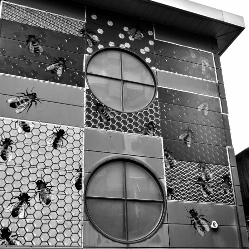 Bees in the City Nelson Street, Bristol. Taken August 2011