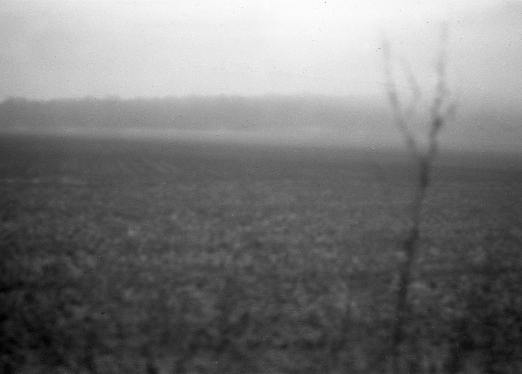 Le pays de la betterave 3/6 Voigtländer Bessa f6.3 / Rollei RPX100 (shouldn't have cleaned the lens myself…)