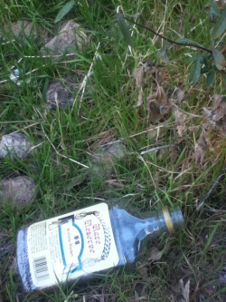 Litter that I took a pic of. (I totally picked it up and tossed it)