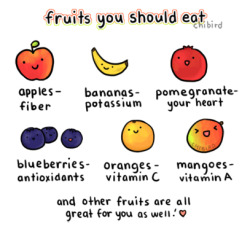 chibird:  I only drew a few fruits, but they're all healthy and super delicious. >u< So eat some fresh fruit every day~