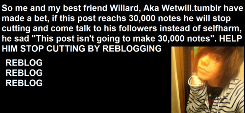 wetwill:  HELP AND REBLOG PLEASE. if you do one thing today, fucking reblog this. You could be the reason for someone surviving. It takes seconds. Do it.