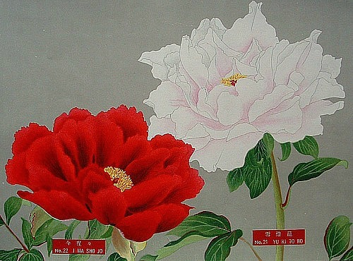 Unknown (Japan) Peonies 1930