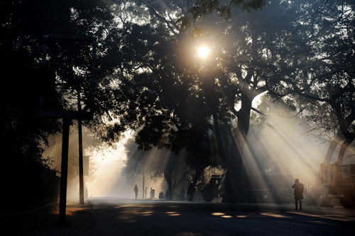 New Delhi, India: A schoolboy walks in the early morning sunlight in the Hauz Khaz neighbourhood