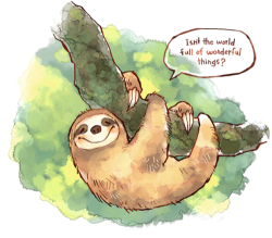 thecorsetstringsunlaced:  Sloths are happy and take their time.