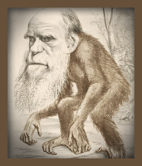 "**10 Myths About Evolution**  1 If Humans Came From Apes, Why Aren't Apes Evolving Into Humans? Humans, apes, and monkeys are only distant evolutionary ""cousins."" We come not from apes but from a common ancestor that was neither ape nor human that lived millions of years in the past. In fact, during the last seven million years many human-like species have evolved; some examples include Homo habilis, Homo erectus, and Homo neanderthalensis. All of these went extinct at different times, leaving just us to share the planet with a handful of other primates.  2 There Are Too Many Gaps in the Fossil Record for Evolution to Be True In fact, there are lots of intermediate fossils. Archaeopteryx, for example, is one of the earliest known fossil birds with a reptilian skeleton and feathers. There is now evidence that some dinosaurs had hair and feathers. Therapsids are the intermediates between reptiles and mammals, Tiktaalik is an extinct lobe-finned fish intermediate to amphibians, there are now at least six intermediate fossil stages in the evolution of whales, and in human evolution there are at least a dozen intermediate fossil stages since hominids branched off from the great apes six million years ago. Considering the exceptionally low probability that a dead plant or animal will fossilize it is remarkable we have as many fossils as we do. First the dead animal has to escape the jaws of scavengers. Then is has to be buried under the rare circumstances that will cause it to fossilize instead of decay. Then geological forces have to somehow bring the fossil back to the surface to be discovered millions of years later by the handful of paleontologists looking for them  3 If Evolution Happened Gradually Over Millions of Years Why Doesn't the Fossil Record Show Gradual Change? Sudden changes in the fossil record are not missing evidence of gradualism; they are extant evidence of punctuation. Species are stable over long periods of time and so they leave plenty of fossils in the strata while in their stable state. The change from one species to another, however, happens relatively quickly (on a geological time scale) in a process called punctuated equilibrium. One species can give rise to a new species when a small ""founder"" group breaks away and becomes isolated from the ancestral group. This new founder group, as long as it remains small and detached, may experience relatively rapid change (large populations are genetically stable). The speciational change happens so rapidly that few fossils are left to record it. But once changed into a new species, the individuals will retain their phenotype for a long time, leaving behind many well-preserved fossils. Millions of years later this process results in a fossil record that records mostly stability. The punctuation is there in between the equilibrium.  4 No One Has Ever Seen Evolution Happen Evolution is a historical science confirmed by the fact that so many independent lines of evidence converge to this single conclusion. Independent sets of data from geology, paleontology, botany, zoology, biogeography, comparative anatomy and physiology, genetics, molecular biology, developmental biology, embryology, population genetics, genome sequencing, and many other sciences each point to the conclusion that life evolved. Creationists demand ""just one fossil transitional form"" that shows evolution. But evolution is not proved through a single fossil. It is proved through a convergence of fossils, along with a convergence of genetic comparisons between species, and a convergence of anatomical and physiological comparisons between species, and many other lines of inquiry. (In fact we can see evolution happen—especially among organisms with short reproductive cycles that are subject to extreme environmental pressures. Knowledge of the evolution of viruses and bacteria is vital to medical science.)  5 Science Claims That Evolution Happens by Random Chance Natural selection is not ""random"" nor does it operate by ""chance."" Natural selection preserves the gains and eradicates the mistakes. To illustrate this, imagine a monkey at a typewriter. In order for the monkey to type the first 13 letters of Hamlet's soliloquy by chance, it would take 26 (to the 13th power) number of trials for success. This is 16 times as great as the total number of seconds that have elapsed in the lifetime of the solar system. But if each correct letter is preserved and each incorrect letter eradicated, the phrase ""tobeornottobe"" can be ""selected for"" in only 335 trials, or just seconds in a computer program. Richard Dawkins defines evolution as ""random mutation plus nonrandom cumulative selection."" It is the cumulative selection that drives evolution. The eye evolved from a single, light sensitive spot in a cell into the complex eye of today not by chance, but through thousands of intermediate steps, each preserved because they made a better eye. any of these steps still exist in nature in simpler organisms.  6 Only an Intelligent Designer Could Have Made Something as Complex as an Eye The anatomy of the human eye shows that it is anything but ""intelligently designed."" It is built upside down and backwards, with photons of light having to travel through the cornea, lens, aqueous fluid, blood vessels, ganglion cells, amacrine cells, horizontal cells, and bipolar cells, before reaching the light sensitive rods and cones that convert the light signal into neural impulses, which are then sent to the visual cortex at the back of the brain for processing into meaningful patterns. For optimal vision, why would an intelligent designer have built an eye upside down and backwards? This ""design"" only makes sense if natural selection built eyes from available materials, and in the particular configuration of the ancestral organism's pre-existing organic structures. The eye shows the pathways of evolutionary history, not intelligent design.  7 Evolution is Only A Theory All branches of science are based on theories, which are grounded in testable hypothesis and explain a large and diverse body of facts about the world. A theory is considered robust if it consistently predicts new phenomena that are subsequently observed. Facts are the world's data. Theories are explanatory ideas about those data. Constructs and other non-testable statements are not a part of science. The theory of evolution meets all the criteria of good science, as determined by Judge William Overton in the Arkansas creationism trial: • It is guided by natural law. • It has to be explanatory by reference to natural law. • It is testable against the empirical world. • Its conclusions are tentative. • It is testable and falsifiable. If you can find fossil mammals in the same geological strata as trilobites then evolution would be falsified. No one has ever found such contradictory data.  8 Evidence for Human Evolution Has Turned Out to Be Fake, Frauds, or Fanciful Eager to discredit evolution, creationists ignore hominid fossil discoveries and cherry pick examples of hoaxes and mistakes in the belief that mistakes in science are a sign of weakness. This is a gross misunderstanding of the nature of science, which constantly advances by using both its mistakes and the successes. Its ability to build cumulatively on the past is how science progresses. The self-correcting feature of the scientific method is one of its most powerful assets. Hoaxes like Piltdown Man, and honest mistakes like Nebraska Man, Calaveras Man, and Hespero-pithecus, are, in time, corrected. In fact, it wasn't creationists who exposed these errors, it was scientists who did so. Creationists simply read about the scientific exposé of these errors, and then duplicitously claimed them as their own.  9 The Second Law of Thermodynamics Proves That Evolution is Impossible The Second Law of Thermodynamics applies to closed, isolated systems. Since the Earth receives a constant input of energy from the sun—it is an open-dissipative system—entropy may decrease and order increase (though the sun itself is running down in the process). Thus, the Earth is not strictly a closed system and life may evolve without violating natural law. As long as the sun is burning, life may continue thriving and evolving, just like automobiles may be prevented from rusting, burgers can be heated in ovens, and all manner of things in apparent violation of Second Law entropy may continue. But as soon as the sun burns out, entropy will take its course and life on Earth will cease.  10 Evolution Can't Account For Morality As a social primate species we evolved a deep sense of right and wrong in order to accentuate and reward reciprocity and cooperation, and to attenuate and punish excessive selfishness and free riding. As well, evolution created the moral emotions that tell us that lying, adultery, and stealing are wrong because they destroy trust in human relationships that depend on truth-telling, fidelity, and respect for property. It would not be possible for a social primate species to survive without some moral sense. On the constitution of human nature is built the constitutions of human societies."
