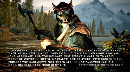 "skyrimconfessions:  ""I accidentally saved over my wonderful level 44 lycanthropic Khajiit thief with a level 8 Nord. Thieves' Guild, Dark Brotherhood, Companions, Archmage, and Stormcloaks, just recently married to Argis, Thane of Whiterun, Riften, Markarth, and Solitude, with houses in all. FINISHED the main quest, just killed Alduin, not Paarthurnax. All gone. Never cried so much in my life.""  http://skyrimconfessions.tumblr.com"