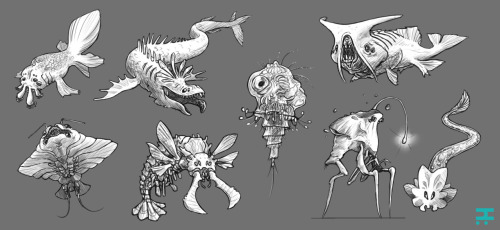 More denizens of the deep.[view fullsize]