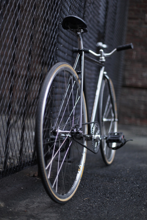 userdeck:  Superb Bicycle.