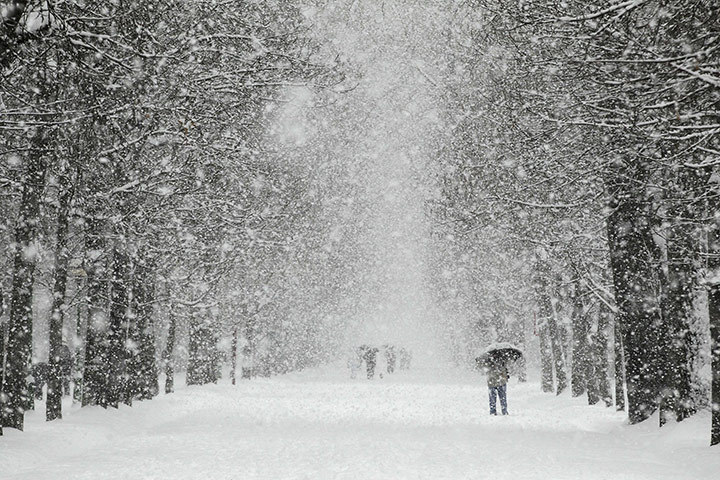 A near blizzard covers paths and parkland in Burgos, northern Spain, Feb. 5, 2012. [Credit : Cesar Manso/AFP/Getty Images]