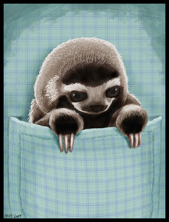 Note to self: Pocket Sloth.