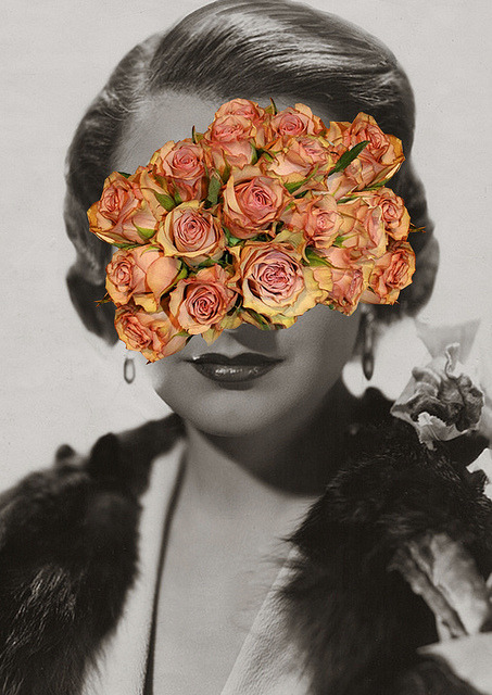 flower face, ashley joseph edwards