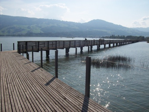 the wooden bridge in Rapperswil, Switzerland Holzbrücke Rapperswil-Hurden (841 m) been there this past fall…a lovely town!