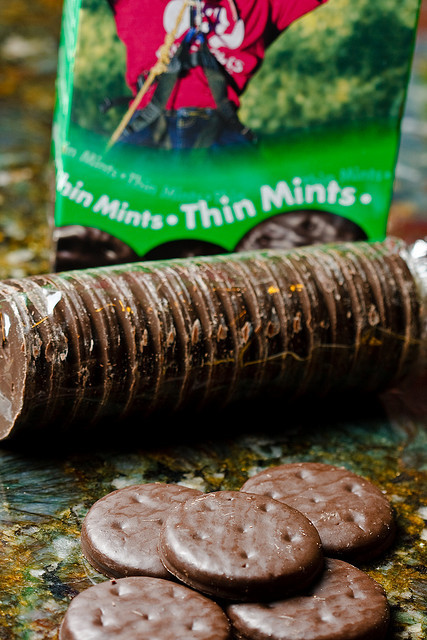 Currently craving these…  Just knowing it is Girl Scout cookie season makes my mouth water. Luckily, I have an order put in, so it is only a matter of time until I sink my teeth into one of these delicious morsels.