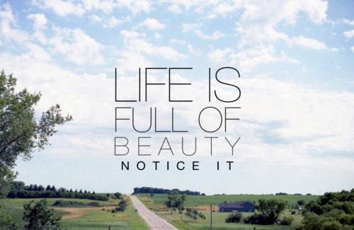 4yourinspiration:  Life is full of beauty, notice it♥