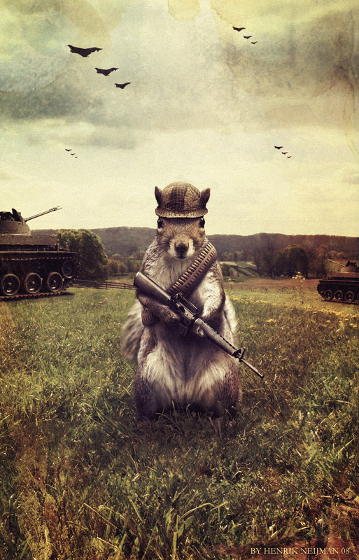 Army Squirrel by ~Neijman