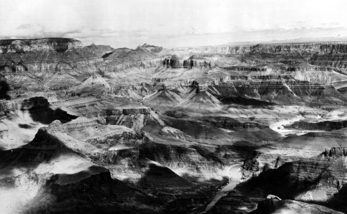fernsandmoss:  N.W. Carkhuff, Grand Canyon, 1901
